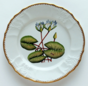 Seascape Waterlily Seascape Waterlily Salad Plate