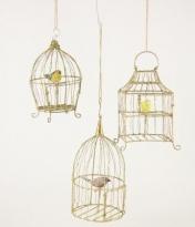 Gilded Birdcage