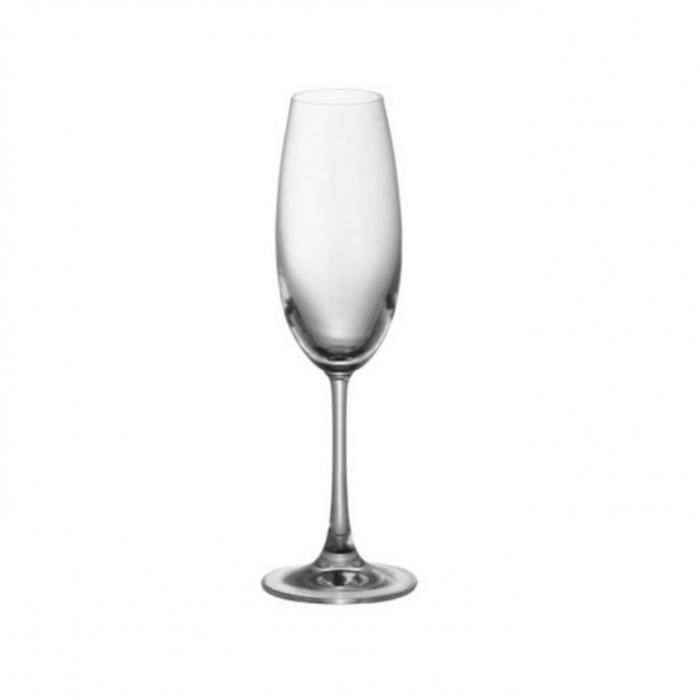 DiVino Champagne Flute