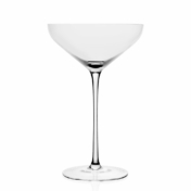 starr champagne coupe