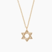 little wolf star of david necklace